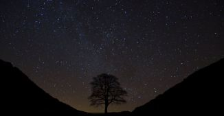 northumberland dark skies